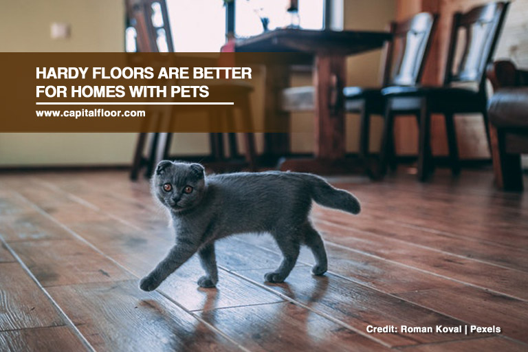 Hardy floors are better for homes with pets