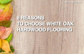 6 Reasons to Choose White Oak Hardwood Flooring