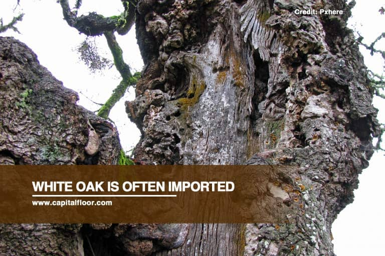 White oak is often imported