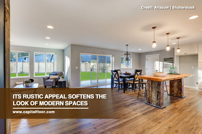 Its rustic appeal softens the look of modern spaces